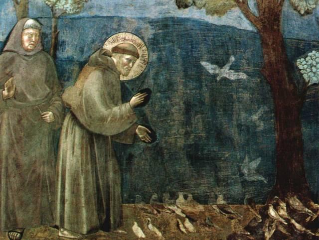 san-francisco-predica-a-los-pajaros